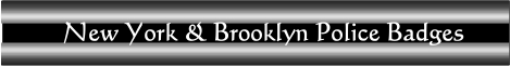 NY & Brooklyn Police badges banner
